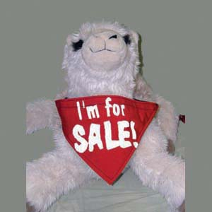 I'm For Sales Scarf
