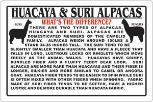 info sign huacaya vs suri