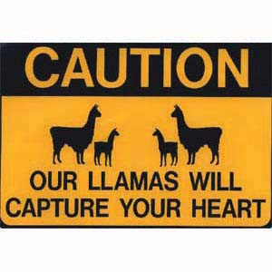 Sticker Capture Heart Llama