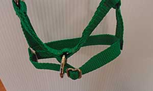 Adjustable Barn Halter Alpaca
