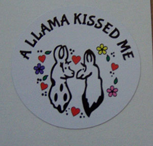 Stickers Llama Kissed Me 10 Pack