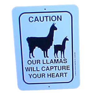 Sign Llamas Capture Heart