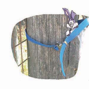 Regular Gate Strap 3 Ft