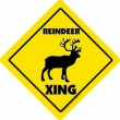 Caution Reindeer Sign