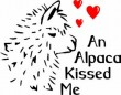 An Alpaca Kissed Me