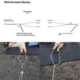Alpaca Restraint Ropes