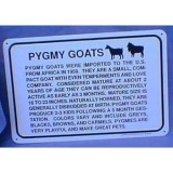 Sign Info Pygmy Goat