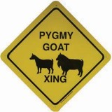 Sign Pygmy Goat Xing