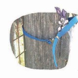 Regular Gate Strap 2 Ft